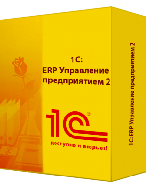 1c-erp-8